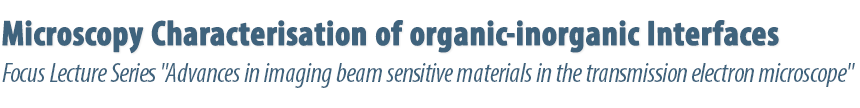 Microscopy characterisation of organic-inorganic interfaces Berlin, March 7-8, 2019